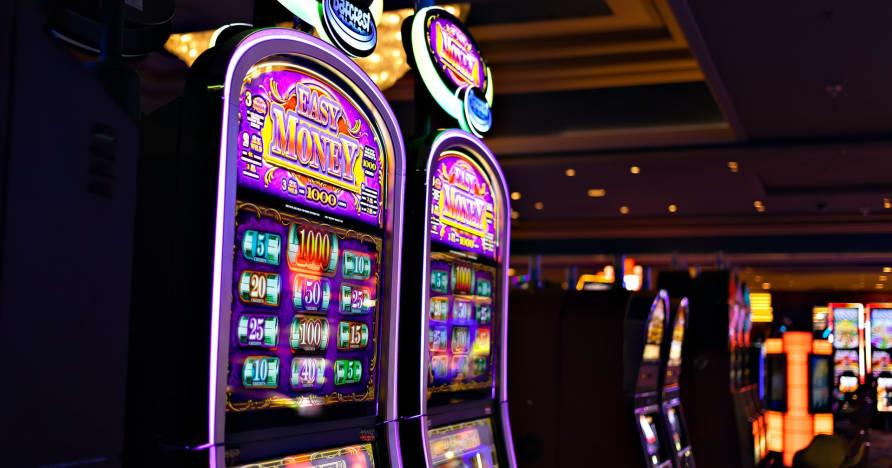 O que você precisa saber sobre Play'n Go Money Spinning New Slots - Rabbit Hole Riches